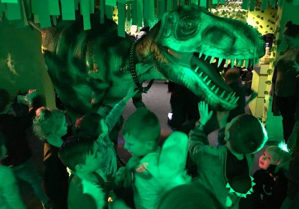 Trixie Dinosaur Image 3